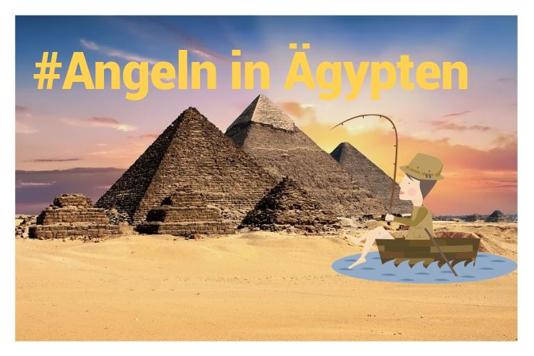 Angeln in Ägypten. Die besten Tipps