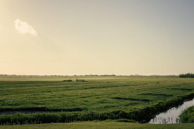Frisische Seen Angeln