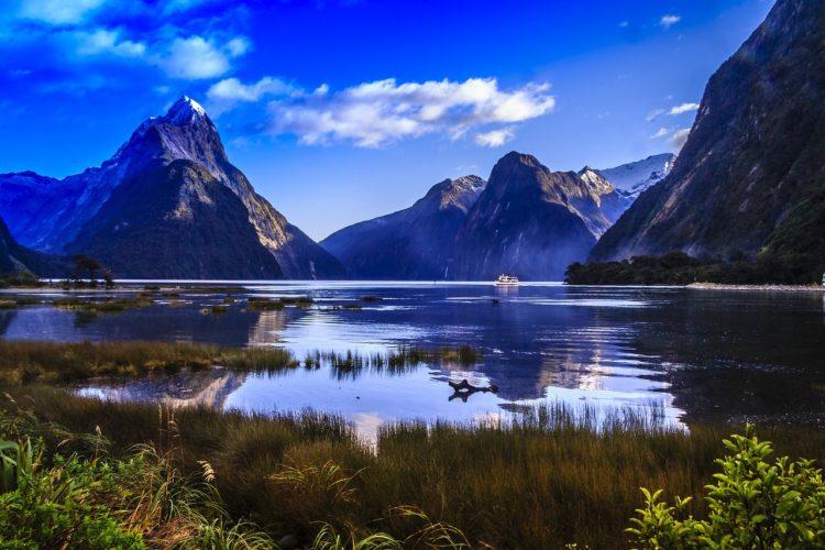 angeln am meer in neuseeland