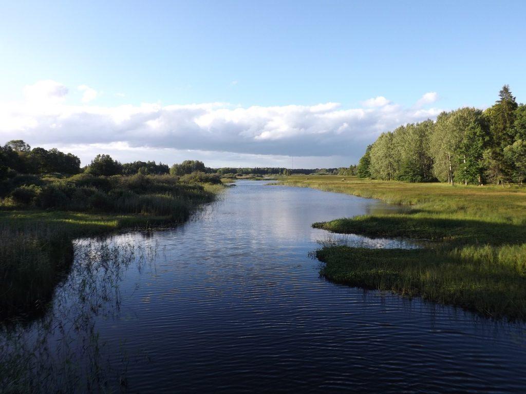 Angeln in Schweden. Die besten Tipps.