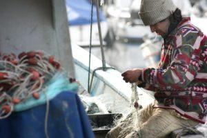 fisch nachhaltig konservieren